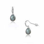 Freshwater gray pearl earrings